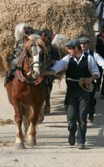 Sant Antoni visto por Jordi Casanova