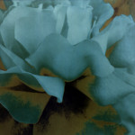 EspaiGarum 18. Roses Endins, Maria Dolors Carmona