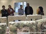 Roser Nadal Expone en Santa Perpètua de Mogoda